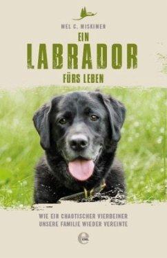 Ein Labrador fürs Leben - Miskimen, Mel