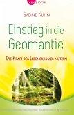 Einstieg in die Geomantie (eBook, ePUB)