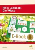 Mein Lapbook: Die Wiese (eBook, PDF)