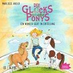 Ein Wunsch geht in Erfüllung / Die Glücksponys Bd.1 (MP3-Download)