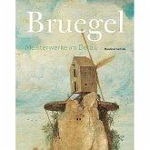 Bruegel - Meisterwerke im Detail