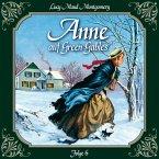 Anne auf Green Gables, Folge 6: Ein rabenschwarzer Tag und seine Folgen (MP3-Download)