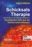 Schicksalstherapie (eBook, ePUB)