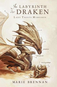 Lady Trents Memoiren 4: Im Labyrinth der Draken (eBook, ePUB) - Brennan, Marie