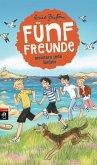 Fünf Freunde meistern jede Gefahr / Fünf Freunde Bd.22 (Mängelexemplar)