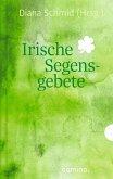 Irische Segensgebete (eBook, ePUB)