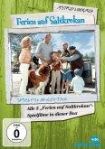 Astrid Lindgren: Ferien auf Saltkrokan Sammler Edi