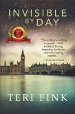 Invisible by Day (eBook, ePUB)
