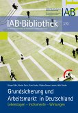 Grundsicherung und Arbeitsmarkt in Deutschland (eBook, PDF)