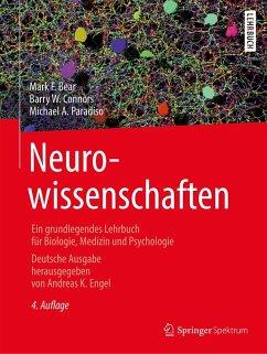 Neurowissenschaften (eBook, PDF) - Connors, Barry W.; Bear, Mark F.; Paradiso, Michael A.