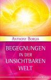 Begegnungen in der Unsichtbaren Welt (eBook, ePUB)