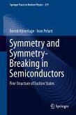 Symmetry and Symmetry-Breaking in Semiconductors (eBook, PDF)
