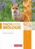 Fachwerk Biologie 7. Jahrgangsstufe - Realschule Bayern - Schülerbuch
