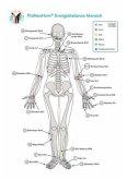 Akupunktur-Tafel Mensch