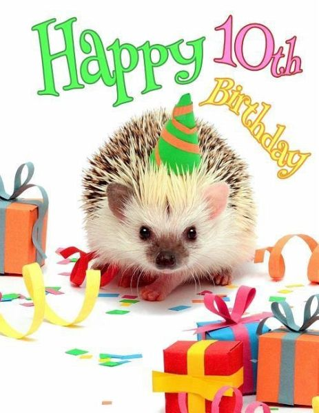 Happy 10th Birthday Better Than A Card Cute Hedgehog Party Themed Journal This Book Is The Perfect Gift For 1
