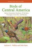 Birds of Central America (eBook, PDF)