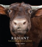 Radiant (eBook, ePUB)