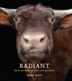 Radiant (eBook, ePUB) - Scott, Traer