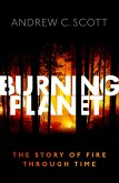 Burning Planet (eBook, PDF)