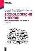 Soziologische Theorie (eBook, ePUB)
