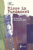 Risse im Fundament (eBook, PDF)