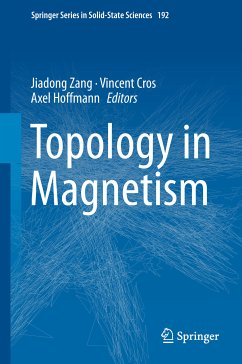 Topology in Magnetism (eBook, PDF)