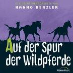 Auf der Spur der Wildpferde (MP3-Download)