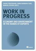 Work in Progress (eBook, PDF)