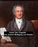 Faust: Der Tragödie (eBook, ePUB)