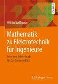 Mathematik zu Elektrotechnik für Ingenieure (eBook, PDF)