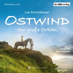 Der große Orkan / Ostwind Bd.6 (MP3-Download) - Schmidbauer, Lea