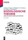 Soziologische Theorie (eBook, PDF)