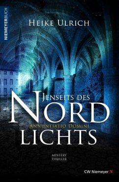 Jenseits des Nordlichts (eBook, ePUB) - Ulrich, Heike