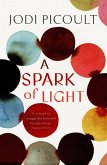 A Spark of Light (eBook, ePUB)