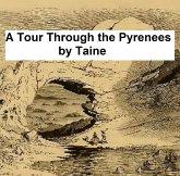 A Tour Through the Pyrenees (eBook, ePUB)