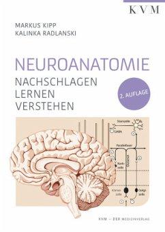Neuroanatomie - Kipp, Markus;Radlanski, Kalinka