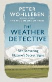 The Weather Detective