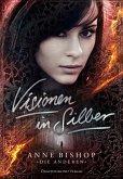 Visionen in Silber (eBook, ePUB)