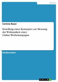 Erstellung eines Konzeptes zur Messung der Wirksamkeit einer Online-Werbekampagne (eBook, PDF)