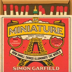 In Miniature - How Small Things Illuminate the ...