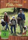 Forsthaus Falkenau - Staffel 11 (3 Discs)