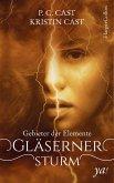 Gläserner Sturm / Gebieter der Elemente Bd.1 (eBook, ePUB)