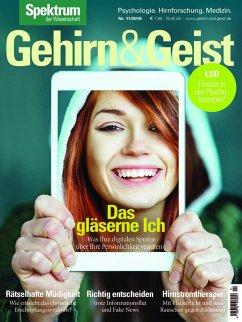 Gehirn&Geist 11/2018 Das gläserne Ich (eBook, PDF)