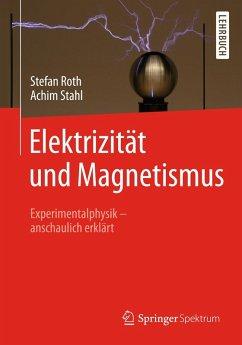 Elektrizität und Magnetismus (eBook, PDF) - Stahl, Achim; Roth, Stefan