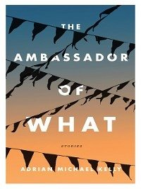 The Ambassador of What (eBook, ePUB)