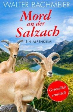 Mord an der Salzach / Tina Gründlich Bd.2