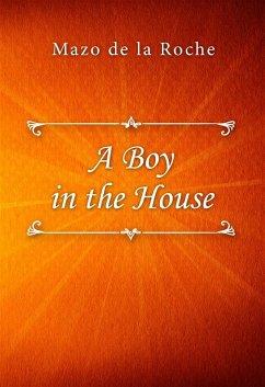 A Boy in the House (eBook, ePUB)