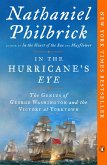 In the Hurricane's Eye (eBook, ePUB)