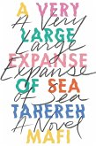 A Very Large Expanse of Sea (eBook, ePUB)