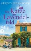 Die Katze im Lavendelfeld